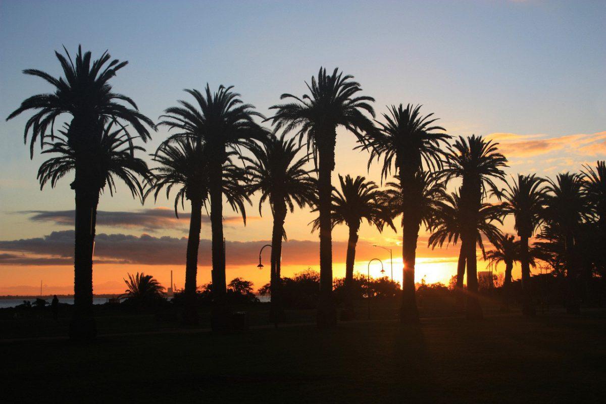 Gambia – przepiękne nieodkryte tereny Afryki